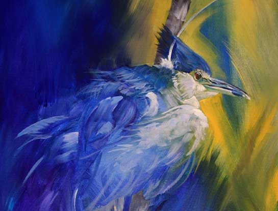 night heron bird art by bird artist Kitty Harvill